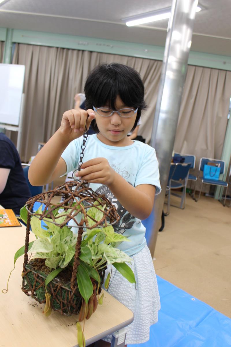 食虫植物寄せ植え10