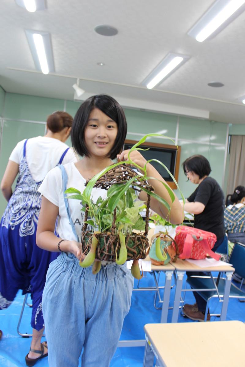 食虫植物寄せ植え8