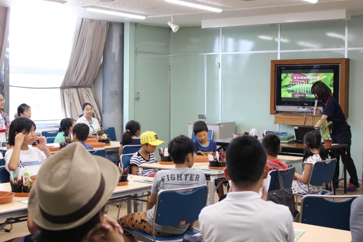 食虫植物観察教室2